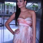 Nathalia Kaur Measurements, Bra Size, Height, Weight