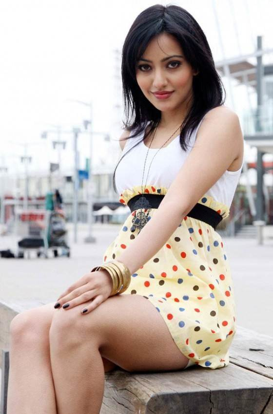 Neha Sharma Measurements