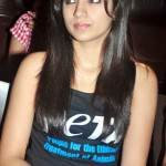 Trisha Krishnan   Measurements, Bra Size, Height, Weight